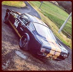 Rent a racer, 1966 Shelby GT350 H