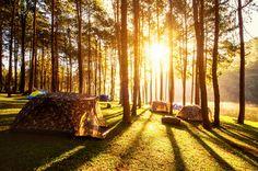 Hodgdon Meadow Campground