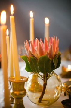 protea centerpiece - my favorite flower~