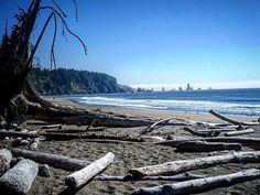 Motivation Monday: Another look back at Third Beach during my last trip to the Pacific Northwest almost a decade ago. Looking forward to seeing this beautiful coastline again this month! #seattle #washington #olympicpeninsula #pnw #thirdbeachtrail #trail #hiking #olympicnationalpark #forest #outdoors #optoutside #pacificcoast #flashback #throwback @olympicnationalpark #thirdbeach #motivationmonday #lapush #beach #seastacks #geology #forkswashington