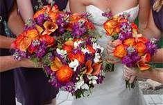 plum and orange wedding ideas - Bing Images