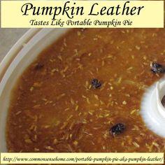 Pumpkin Leather - Tastes Like Portable Pumpkin Pie @ Common Sense Homesteading Detox Recipes, Raw Food Recipes, Healthy Recipes, Drink Recipes, Pumpkin Recipes, Fall Recipes, Easy To Make Snacks, Freezer Cooking, Freezer Recipes