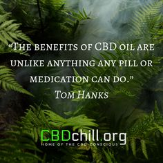 The benefits of CBD oil are unlike anything any pill or medication can do - Tom Hanks Tom Hanks, How To Get Rich, Insomnia, Consciousness, Benefit, Things To Come, Medical, Oil, Medical Doctor