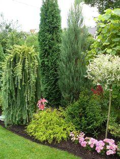 Мой сад - 2012 – 60 photos | VK