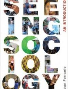 Seeing Sociology: An Introduction (Available Titles CourseMate) pdf download