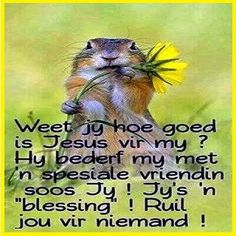Uplifting Christian Quotes, Christian Messages, Christian Sayings, Prayer Verses, Bible Verses, Prayer Quotes, Beautiful Quotes Inspirational, Birthday Verses For Cards, Lekker Dag