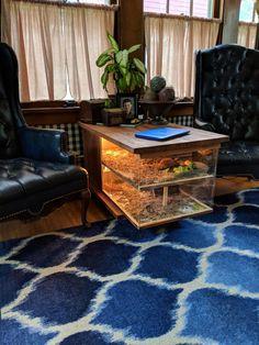 Top 40 Amazing Aquarium Coffee Table Design Ideas To see more Visit👇 Tortoise House, Tortoise Habitat, Tortoise Table, Reptile Habitat, Reptile Room, Turtle Habitat, Tortoise Terrarium, Terrarium Reptile, Snake Enclosure