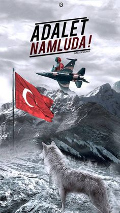 Turk wallpaper by altunethem - - Free on ZEDGE™ Turkish Soldiers, Turkish Army, Pakistan Defence, Graffiti Cartoons, Ottoman Turks, Michael Jordan Basketball, Graffiti Wallpaper, Outdoor Yoga, Beautiful Places To Travel