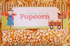 Fall Harvest Pumpkin Playdate Girl Boy Party Planning Ideas