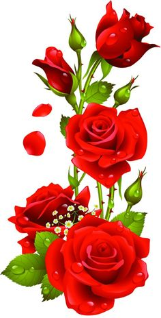Rosred Once we approached the Flores & Prats organization, we wanted to target on the Beautiful Rose Flowers, Flowers Gif, Beautiful Flowers Wallpapers, Beautiful Nature Wallpaper, Red Flowers, Colorful Flowers, Flower Phone Wallpaper, Rose Wallpaper, Neon Wallpaper