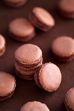 Chocolate and tonka bean macarons--have never tried tonka beans. This may be it.