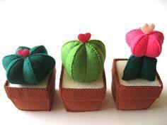 Felt cacti / cactus de fieltro