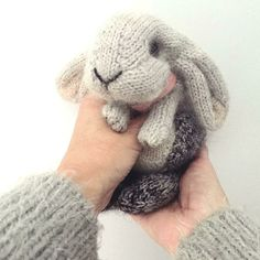 Crochet Amigurumi Rabbit Patterns Ravelry: Holland Lop Rabbit pattern by Claire Garland - This is a homage to a little grey lop-eared bunny that we used to have - she was called Nibbles and she was indeed this tiny when we brought her home… Knitted Bunnies, Knitted Animals, Knitted Stuffed Animals, Knitted Dolls, Knitted Bags, Knitted Blankets, Knitting Needles, Free Knitting, Knitting Toys