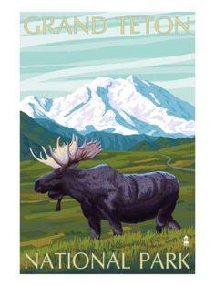 Grand Teton National Park poster Grand Teton National Park, Yellowstone National Park, National Park Posters, National Parks, Nature Sauvage, Poster Art, Poster Boards, Grand Lake, Mountain Art