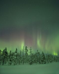 Sweden by peterspencer49, via Flickr