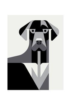 Josh Brill | Labrador Retriever Portrait