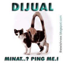 DP BBM Animasi Terbaru Versi Photoshop : Animasi DP BBM Kucing,Humor BBM