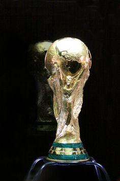 Fifa, World Cup Trophy, Lion Sculpture, Statue, Art, Nice Photos, Wall, Brazil, Sculpture