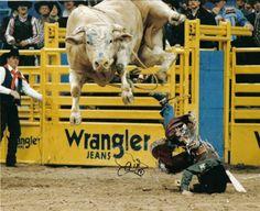 Bodacious: Most Dangerous Bull Ever.  His offspring still the baddest bulls to ride.