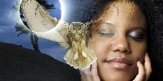 Do you sense that you have deep, untapped inner capacities that are wanting to emerge from within you? Here are 9 signs you are already a shaman and dont know it. Spiritual Meaning, Spiritual Power, Out Of Body, Shamanism, Lucid Dreaming, Intuition, Brushes, Buddha, Spirituality