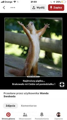 Weekend Humor, Beautiful Love Pictures, Super Funny, Motto, Movie Stars, Haha, Jokes, Polish Sayings, Funny Sayings