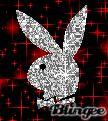 play boy Boy Pictures, Random Pictures, Playboy Logo, Playboy Bunny, Boy Art, Photo Editor, Digital Art, Animation, Fantasy