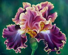 Luminata Iris by TernFeather.deviantart.com on @deviantART