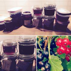 Ripsgele, Solbærgele og rips-og solbærsyltetøy Tableware, Marmalade, Dinnerware, Dishes