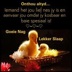 Night Wishes, Day Wishes, Good Night Quotes, Morning Quotes, Positive Thoughts, Deep Thoughts, Afrikaanse Quotes, Goeie Nag, Christian Messages