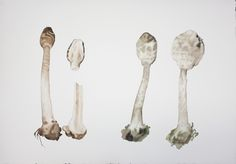 Guo Hongwei: Painting is Collecting III