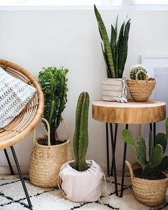3 Easy Planter Ideas (When You're Too Lazy To Repot is part of Easy home decor - Hey guys! Sharing little plant hack that I use when I want my plants to look great, but can't be bothered to repot them Read on to see 3 easy planer ideas! Apartment Plants, Apartment Living, Apartment Ideas, Apartment Design, Diy Casa, Easy Home Decor, Green Home Decor, Deco Design, Home And Deco