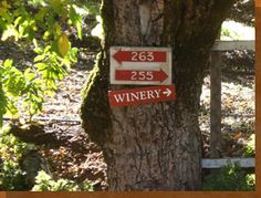 Sonoma and Napa Wine Tours | Platypus Wine Tours - Ranked #1 on Trip Advisor!