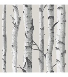 WallPops® NuWallpaper™ Birch Tree Peel And Stick Wallpaper