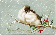 The Old Design Shop: Christmas birds