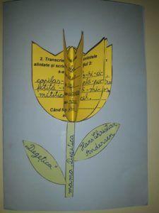 Degețica Hans Christian, School, Crafts, Manualidades, Handmade Crafts, Craft, Arts And Crafts, Artesanato, Handicraft