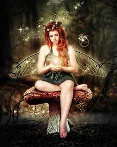 mushroom_fairy_magic_by_brandrificus-d4q6o8y.jpg image by lauramaillady - Photobucket