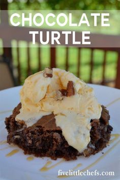 Chocolate Turtle Cake is an easy recipe. Use a german chocolate cake mix then add in some chocolate chips and caramel. #CupcakeBirthdayCake Chocolate Turtle Cakes, German Chocolate Cake Mix, Healthy Dessert Recipes, Easy Desserts, Delicious Desserts, Yummy Food, Pear Recipes, Cake Mix Recipes, Cupcake Birthday Cake