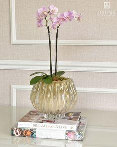 Accent Decor, Glass Vase, Decorative Accents, Instagram, Home Decor, Colors, Templates, Decoration Home, Room Decor