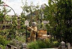 A dedicated beekeeper in full gear in front of a beehive and a bird box in a leafy roof terrace garden.