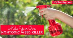 Make Your Own Nontoxic Weed Killer