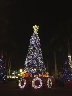 Holiday Tree Lighting Boca Raton Florida #Kids #Events & Village of Merrick Parku0027s Annual Tree Lighting Ceremony Coral ... azcodes.com