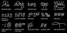 STUDENT TYPEFACE DESIGN MERITS: Monolina—UMPRUM Academy of Arts, Architecture & Design in Prague, Prague, Czech Republic; www.umprum.cz: Tomáš Brousil, Radek Sidun, Karel Haloun (art directors), Petra Dočekalová (designer), Studio of Type Design and Typography (advising instructors)