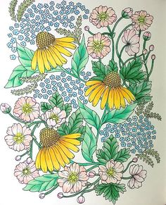 Instagram media bngoc2988 - #blomstermandala #adultcoloring #flower #wildflowers #mariatrolle