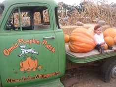 Experience a place that takes on a real life dairy farm and plow the fields for pumpkins! A great space to spend the day finding your pick!