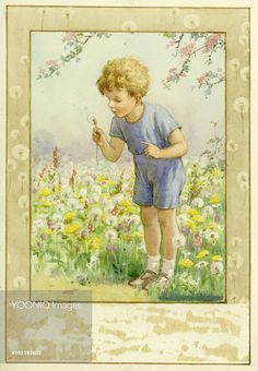 Boy blowing on a Dandelion Clock - Illustration from the book 'Magic Flowers'. Margaret Tarrant
