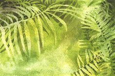 A Nature Art Journal in Southwest Florida: Ferns along the boardwalk Watercolor Leaves, Process Art, Painting Tips, Natural World, Ferns, Elizabeth Smith, Palms, Sketchbooks, Drawings