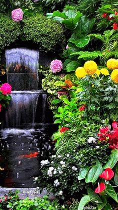 """Such a beautiful waterfall, to watch and such lovely flowers, to sit and smell, """"HEAVEN"""" Beautiful Nature Wallpaper, Beautiful Gif, Beautiful Roses, Beautiful Landscapes, Beautiful Gardens, Gif Pictures, Nature Pictures, Gif Bonito, Hd Nature Wallpapers"""