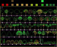 imagen Planos de Bloques arboles en DWG AUTOCAD, Arboles en alzado - Arboles y plantas
