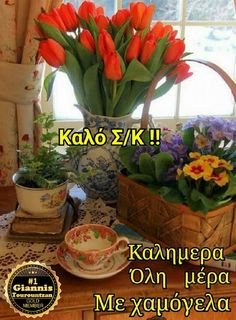 Greek Beauty, Plants, Quotes, Plant, Planets