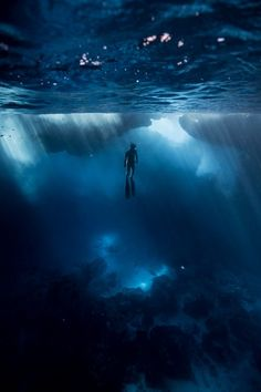 Saltwater Sanctum Photo by Jessie Cripps -- National Geographic Your Shot Underwater Photos, Underwater Photography, Underwater Caves, Sea Photography, Street Photography, Landscape Photography, Portrait Photography, Fashion Photography, Wedding Photography